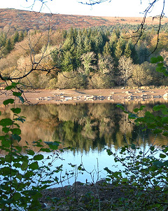 Burrator Reservoir, from Michael Parle's photos of Dartmoor