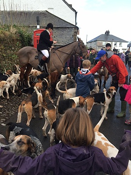 Christmas 2014 - The horses and hounds gather for the hunt.